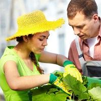 Ubezpieczenie Gospodarstwa Rolnego, OC rolnika, upraw